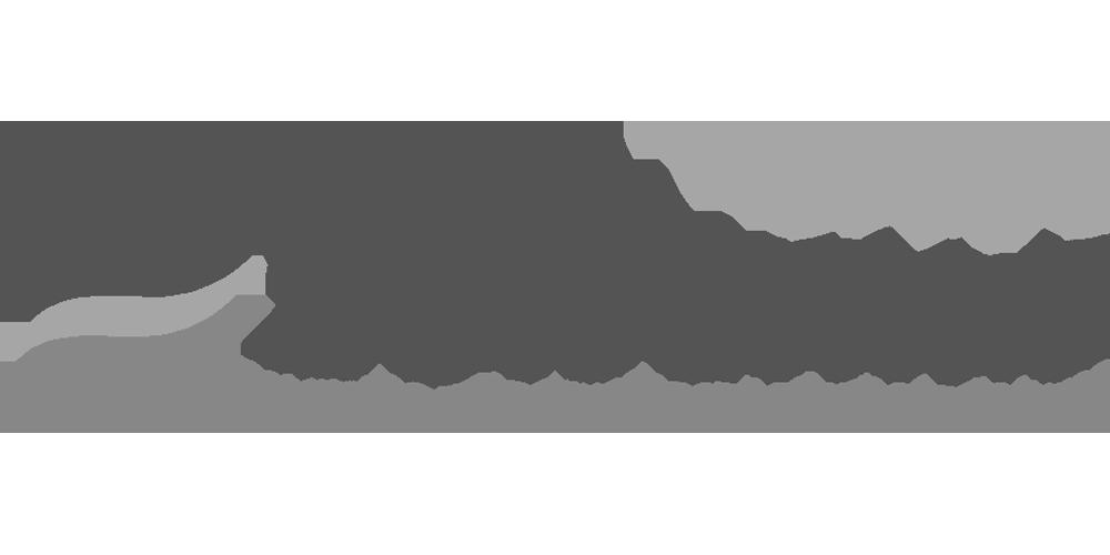 Grupo Saloumar